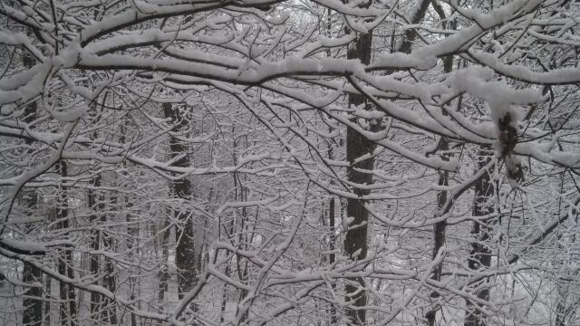 Winter in Pepperill, Mass.